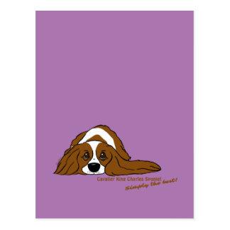 Cavalier King Charles Spaniel - Simply the best! Postcard