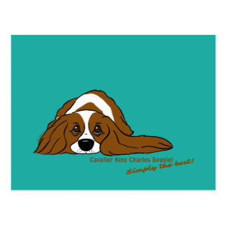 Cavalier King Charles Spaniel - Simply the best! Postcard
