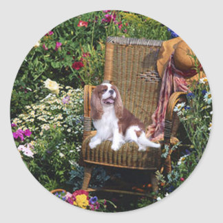 Cavalier King Charles Spaniel Sticker