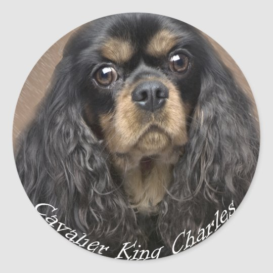 Cavalier King Charles Spaniel Stickers