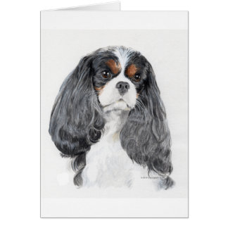 Cavalier King Charles Spaniel Tri Greeting Card