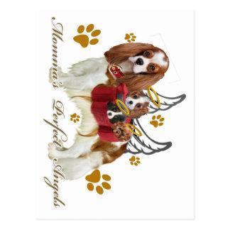Cavalier Momma's Angels Postcard