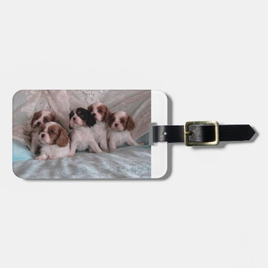Cavalier Puppy Luggage tag