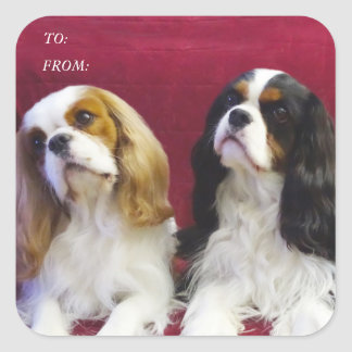 Cavalier Spaniels Gift Tag Stickers