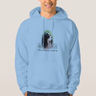 Cavaliers - all the elements of a beautiful dog hoodies