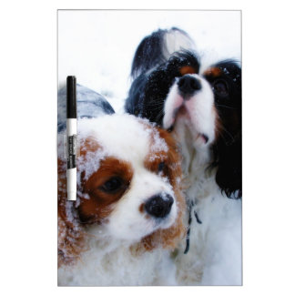 Cavaliers in the Snow Dry Erase Board