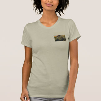 Cave Creek Landscape Women's Jersey Top