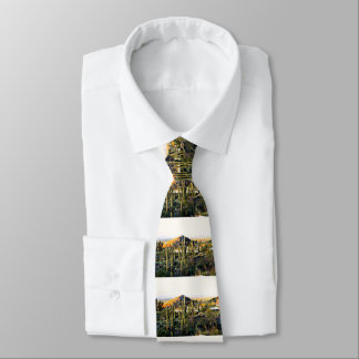 Cave Creek  @ Sunset Landscape Men's Tie