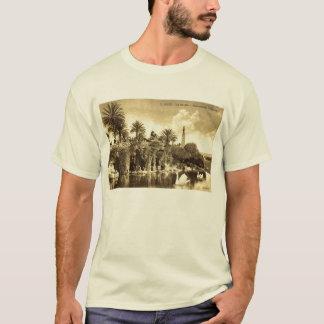 Cave Gardens, Nice France 1910 Vintage T-Shirt