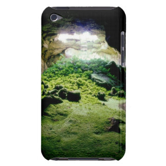 Cave image on Ipod case