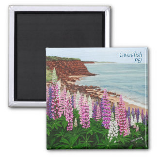 Cavendish Cliffs and Spring Lupins Square Magnet