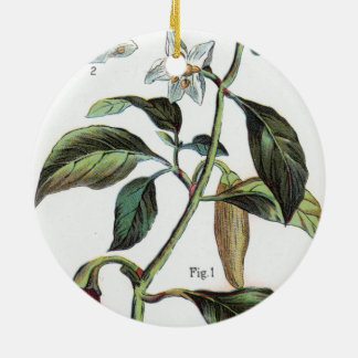 cayenne pepper Flower Ceramic Ornament