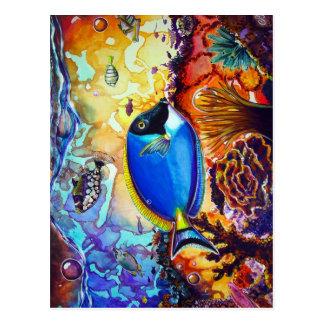 CBjork's Island Reef Of Enlightenment Postcard