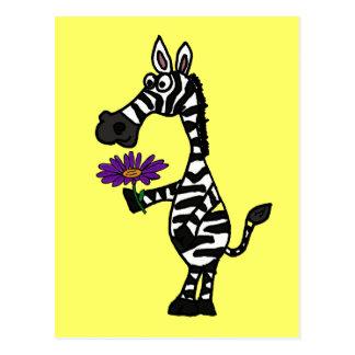 CD- Funny Zebra with Daisy Postcard