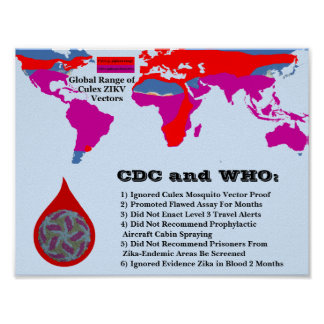 CDC & WHO Failed to Protect Citizens by RoseWrites Poster