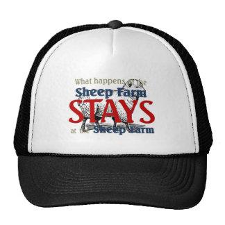 Ce qui se produit à la ferme de moutons casquette