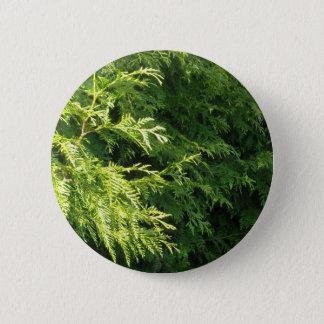 Cedar Hedge 2 Inch Round Button