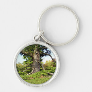 Cedar-of-Lebanon Tree Key Ring Silver-Colored Round Keychain