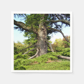Cedar-of-Lebanon Tree Paper Napkins