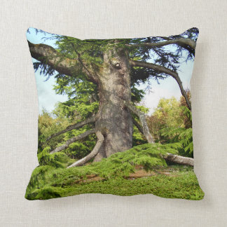 Cedar-of-Lebanon Tree Throw Cushion