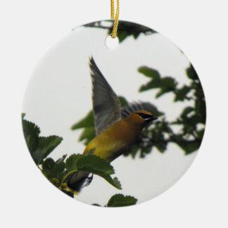 Cedar Wax Wing Round Ceramic Ornament