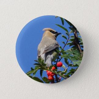 Cedar Waxwing 2 Inch Round Button