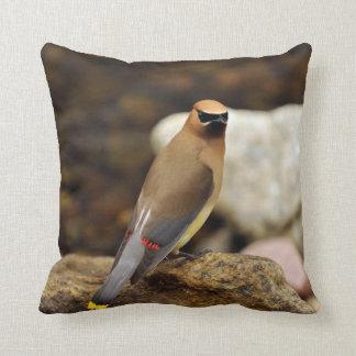 Cedar Waxwing American MoJo Pillow