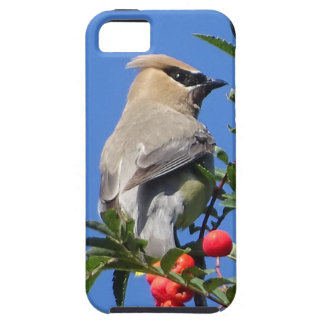 Cedar Waxwing Case For The iPhone 5
