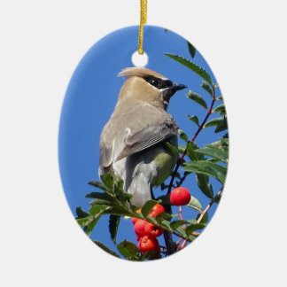Cedar Waxwing Ceramic Oval Ornament