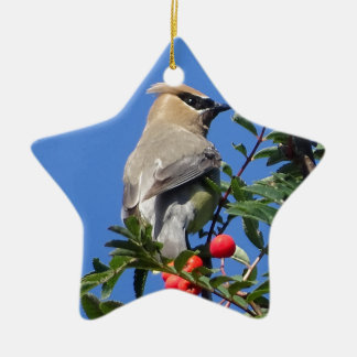 Cedar Waxwing Ceramic Star Ornament