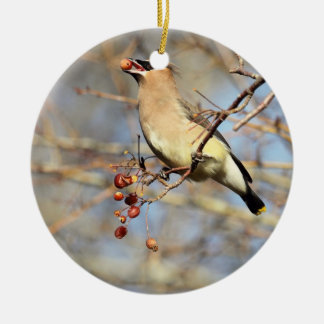 Cedar Waxwing Eating Berries Round Ceramic Ornament