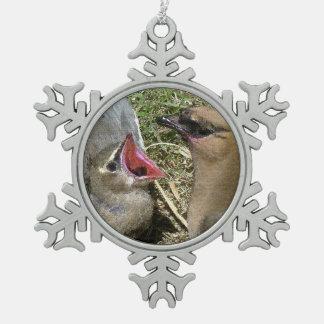 Cedar Waxwing Fledgling Snowflake Ornament