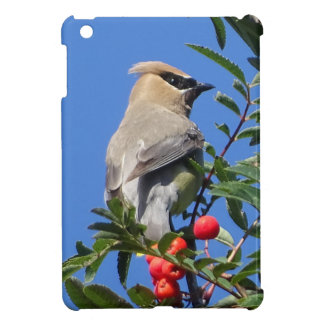 Cedar Waxwing iPad Mini Cases