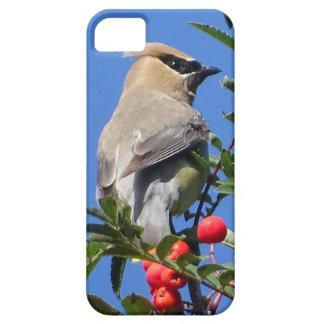 Cedar Waxwing iPhone 5 Covers