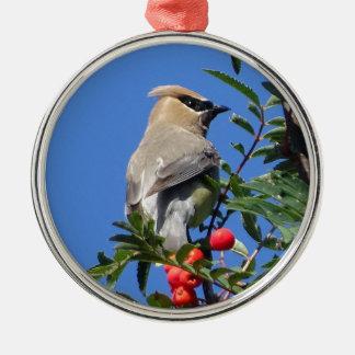 Cedar Waxwing Metal Ornament