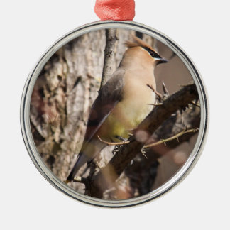 Cedar Waxwing Silver-Colored Round Ornament