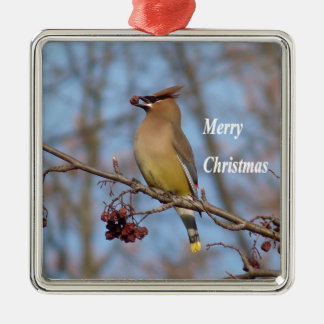 Cedar Waxwing Silver-Colored Square Ornament