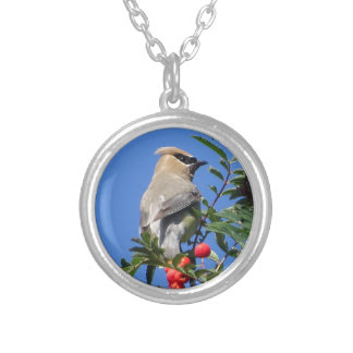 Cedar Waxwing Silver Plated Necklace