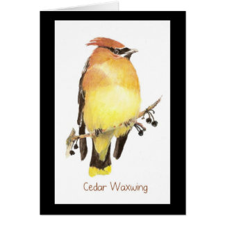 Cedar Waxwing, Watercolor Bird Card