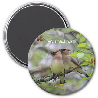 Cedar Waxwings Magnet
