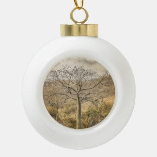 Ceiba Tree at Dry Forest Guayas District - Ecuador Ceramic Ball Christmas Ornament