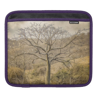 Ceiba Tree at Dry Forest Guayas District - Ecuador iPad Sleeve