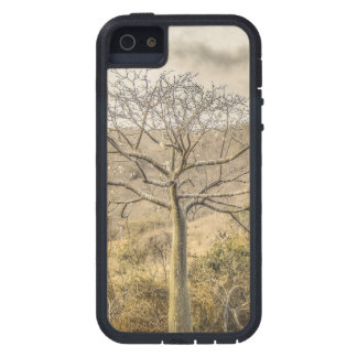 Ceiba Tree at Dry Forest Guayas District - Ecuador iPhone 5 Case