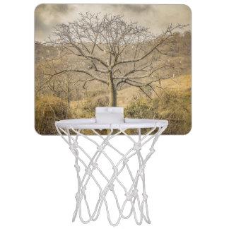 Ceiba Tree at Dry Forest Guayas District - Ecuador Mini Basketball Backboard