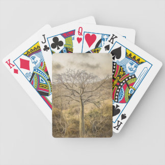 Ceiba Tree at Forest Guayas Ecuador Bicycle Playing Cards