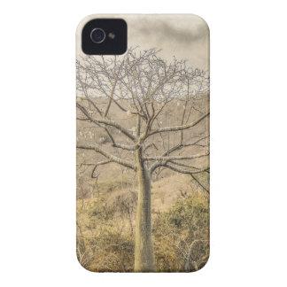 Ceiba Tree at Forest Guayas Ecuador iPhone 4 Case