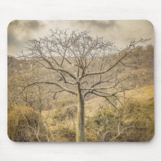 Ceiba Tree at Forest Guayas Ecuador Mouse Pad