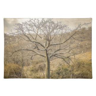 Ceiba Tree at Forest Guayas Ecuador Placemat