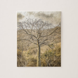 Ceiba Tree at Forest Guayas Ecuador Puzzles