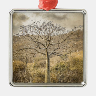 Ceiba Tree at Forest Guayas Ecuador Silver-Colored Square Ornament